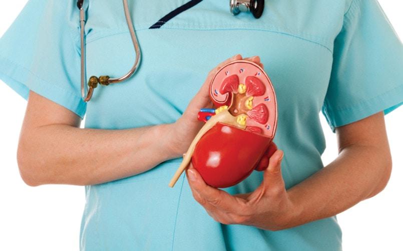 Kidney specialists in Delhi
