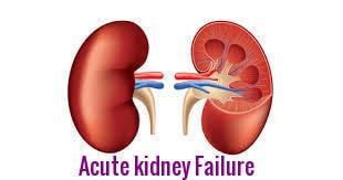 Kidney Fail